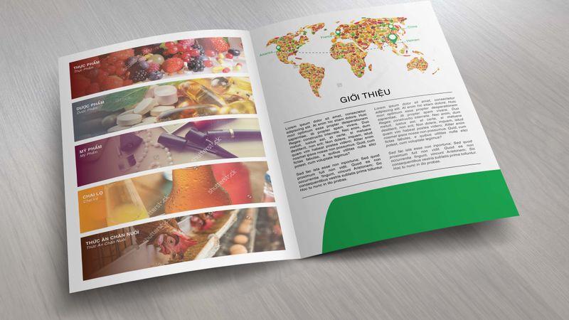 Thiết kế folder công ty cổ phần thương mại và tư vấn Cát Vàng